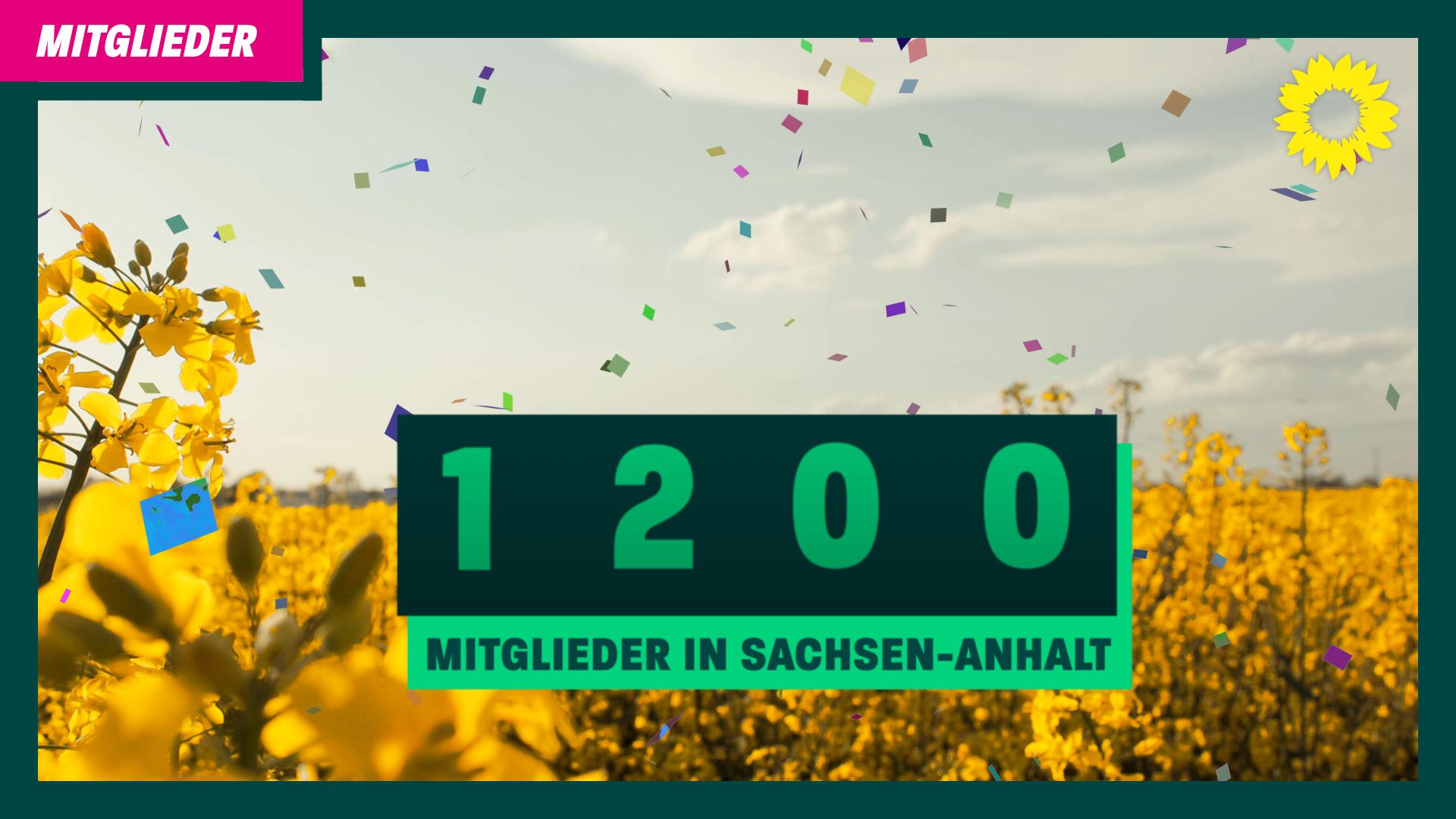 Deutlicher Zuwachs – 1.200 Grüne in Sachsen-Anhalt
